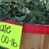 SNAP sign-up day for NC farmers and farmers markets