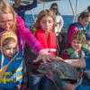 Coast Guard assists with sea turtle release off NC coast