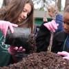 Tree potting muddies the hands, nurtures the soul