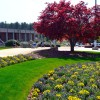 RCC series to focus on beautifying landscapes