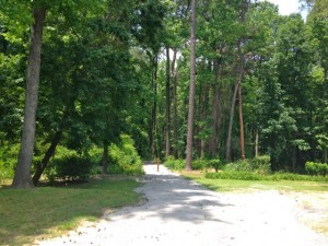Kevin Spradlin | PeeDeePost.com Richard McInnis and family sold 2.04 acres to the city of Rockingham that will help preserve public access to the Hitchcock Greenway walking trail at Love Lane.
