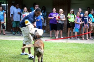 Kevin Spradlin   PeeDeePost.com Scan the faces of the youthful onlookers as Officer J.A. Gilbert braces for impact from K-9 Officer Breston.