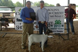 Submitted photo Jordan Carroll is currently undefeated in his senior showmanship age division for Circuit placings.