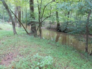 "The Sneedsborough Canal from the east bank appears as a large creek with water. Although it empties to the south into the Pee Dee River, it is not a ""flowing"" stream."