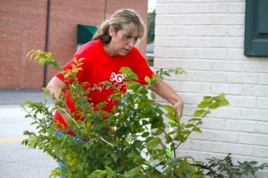 Kevin Spradlin | PeeDeePost.com Jackie Jamerson, of FirstHealth, clears weeds from the front of the Richmond County Literacy Council building on East Washington Street in Rockingham.