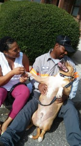 Submitted photo Nikki and Ray Ellerbe meet Bubba, a pit bull found in February 2013. He had been abandoned, was grossly underweight and was found eating garbage.
