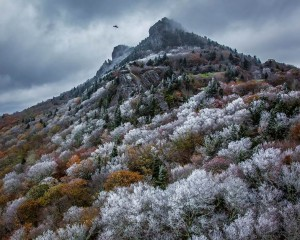 """Rime Ice on Trees on Grandfather Mountain"" by Wick Smith, of Fayetteville, captured third place in Wild Landscapes."