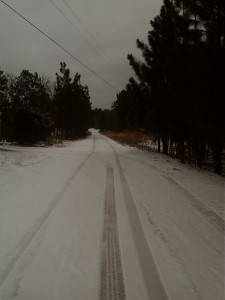 Sterling Riddick took a photo of a quiet street in Hamlet.