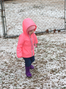 Amber Diggs snapped this pic of Addison Leigh Diggs in Rockingham.