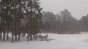Deb Smith took this photo earlier this morning near Norman.