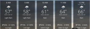 The Weather Channel's forecast suggests it's going to rain tomorrow on the participants of the 24th annual Ellerbe Marathon.