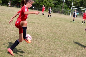 Kevin Spradlin | PeeDeePost.com Chloe Wiggins recorded an assist on Emily Buie's goal, Hamlet's first of the match.