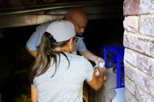 Kevin Spradlin | PeeDeePost.com Macy Steen chooses her preserved produce from the Leak-Wall House root cellar.