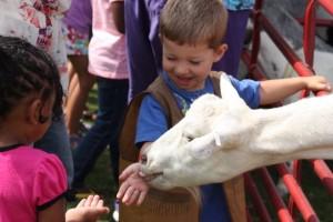 Kevin Spradlin | PeeDeePost.com Ryan Ferguson, 3, of Rockingham, enjoys the petting zoo in July 2014 at the library.